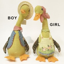 Sing & slide boy & girl duck